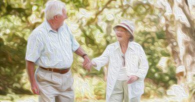 DDL su invecchiamento attivo